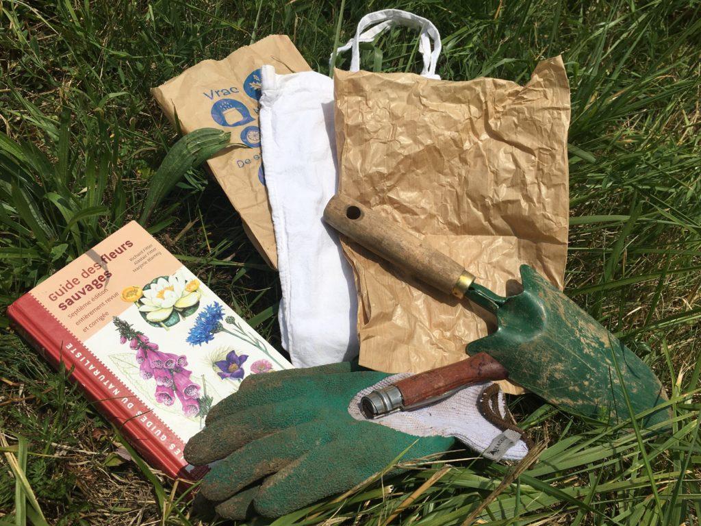 Matériel de cueillette pour utiliser les plantes sauvages comestibles