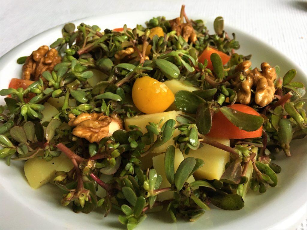 Salade pommes de terre pourpier