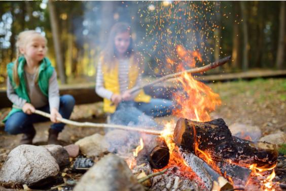 cueillir cuisiner plantes enfants feu