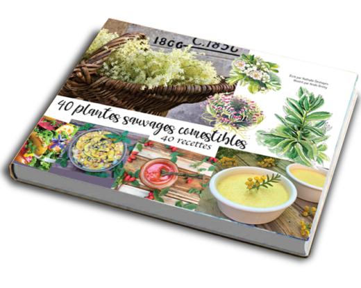 livre 40 plantes sauvages comestibles 40 recettes recadré