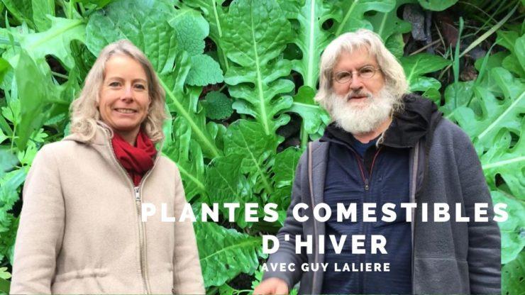 Plantes comestibles d'hiver avec Guy Lalière