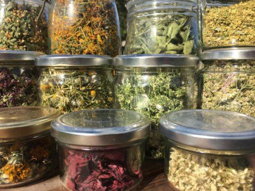 Plantes sauvages séchées en cuisine