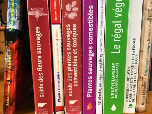 Livres sur les plantes sauvages comestibles