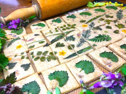 Gâteaux apéritifs à l'huile d'olive et aux plantes sauvages